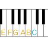 【ピアニスト向け】エレキベースの指板の覚え方
