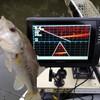 亀山ダム 2020/11/29 釣果1本28cm ガーミン魚探購入、リチウム電池 34回目