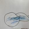 自閉スペクトラム症の息子。遠足の絵を描くのに一週間かかりました。