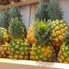 8月17日は「パイナップルの日」その2~パイナップルの漢字知ってる?(*´▽`*)~プラス移植記事