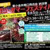 ヒガコサマーフェスティバル2014のお知らせ