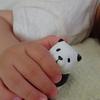 パンダをギュッと握る。