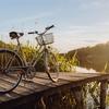 孤独な少女の生きる道、2019年アメリカで1番売れた『ザリガニの鳴くところ』