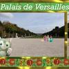 ヴェルサイユ宮殿!!広ーい庭園その2 ハネムーン旅行記2014 フランス&イタリア♪