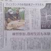 羊をめぐる冒険in川本町