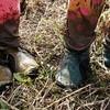 田植え用の子供靴に新発想!代用品となれるのか?