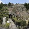 お天気に誘われて・・・谷性寺 篠葉神社