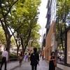 【地方在住50代主婦、はじめて東京ひとり旅⑫】表参道でランチ