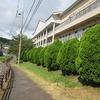校舎南側の花、野菜、やまびこ学級の活動