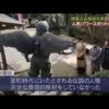 映画「DESTINY 鎌倉ものがたり」のロケ地(鎌倉)情報 PART4