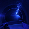 夜の水族館に行ったらラッセンの絵のような写真を撮りたくなった