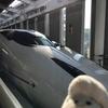 九州新幹線つばめ号