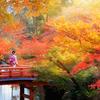 やっぱり日本の紅葉は美しい!観光客にも大人気の紅葉の魅力