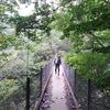 甲武信ヶ岳(2475m)~笛吹川東沢~釜の沢東俣