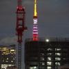 寓居マンションから東京タワーが見えなくなった。