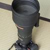 ニコンの望遠レンズ、AI Nikkor ED 400mm F2.8S(IF)ほとんど使わずとてもきれい