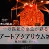 熊本でアートアクアリウム初開催!一万匹超の金魚が彩るアートアクアリウム城【2019】