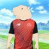 湘南国際マラソンのTシャツが届きました