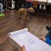 """犬との絆を強める~""""テリントンTタッチ""""セミナーに参加してきました。"""