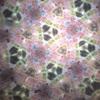 折り紙の切断問題(5)