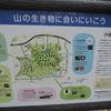 戸祭山緑地