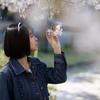 COCOROちゃん その29 ─ 桜よ咲いてよ咲いて咲いてお散歩撮影会2021 ─