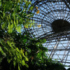 新木場 夢の島公園は水爆実験、ヨットハーバー、ジャングルにアーチェリー?
