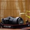 【2021年:購入前の悩み】キヤノン EOS RP ~シグマ『105mm F2.8 DG DN MACRO』の紹介と標準ズームレンズの選択~