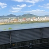 広島不動院前の国道から望む武田山