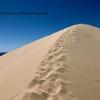 もうアイスクリームにしか見えなかったモハーベ砂漠のケルソー・デューンズ | カリフォルニアのトレッキング