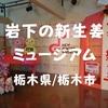 【観光スポット】栃木県栃木市「岩下の新生姜ミュージアム」煌めく幻想的ピンク生姜空間