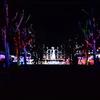 500万球もの電球の輝き!神戸イルミナージュを撮ってきた!