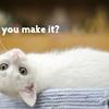 """【英語】「都合がつきますか?」と英語で聞く時は""""make""""を使う"""