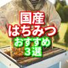 天然ハチミツ オススメ3選  国産天然ハチミツが青空レストランで美味しそうでした。