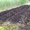 土を乾かしたい。