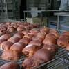 パン→リュスティック ブルーベリーの穂木の採取とジョウビタキ