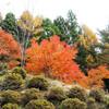 古殿町 鎌倉岳に登ってきました