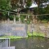 水かけ不動明王の池(東京都目黒)