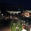 『宮地嶽神宮』の菖蒲祭り