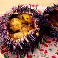 オーストラリアで雲丹(ウニ)を食べる♡