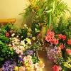 #65 暑い時期 お花を長持ちさせるには?