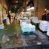 川崎の台所~川崎北部市場