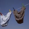 パンツは1年に1回捨てること!洗ってもバクテリアは残ってるらしい!