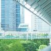 日曜日のオフィス街❨品川インターシティ❩