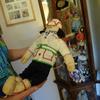 アラスカで見た人形に、デザインの本質を見た気がした