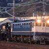 第378列車 「 おかえりポニー! C56 160号機の帰還を狙う 」