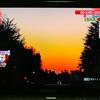 【体育の日】NHK「あさイチ」にて私の撮った写真が放送されるみたいです【放送されました】