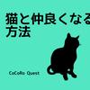 猫と仲良くなりたければ「ゆっくり瞬きをしよう」という研究
