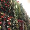 クリスマスの準備 →→半額だからと買いすぎていま反省中
