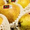ゼネラルレクラークの旬の時期、食べ方、値段…青森の希少な洋梨を味わおう!